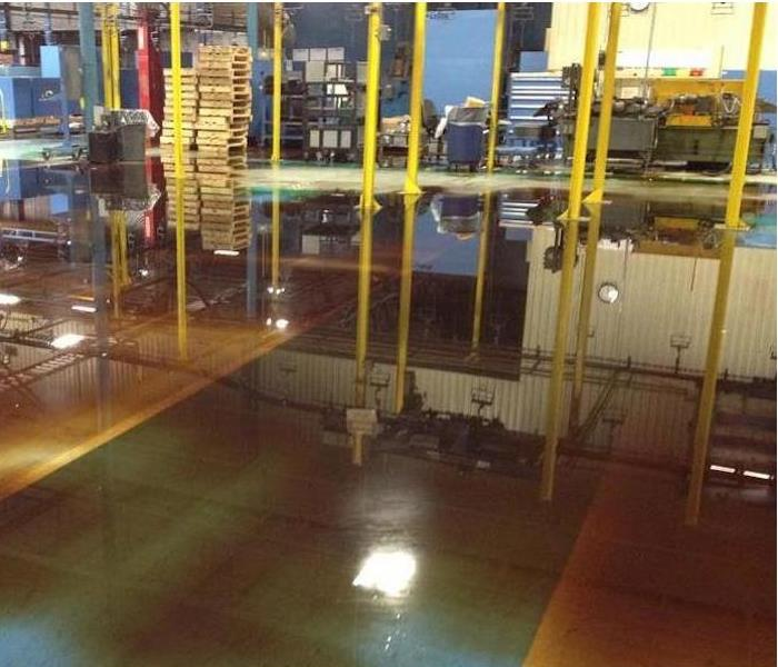 Commercial Water Damage – Minnetonka Plant Before