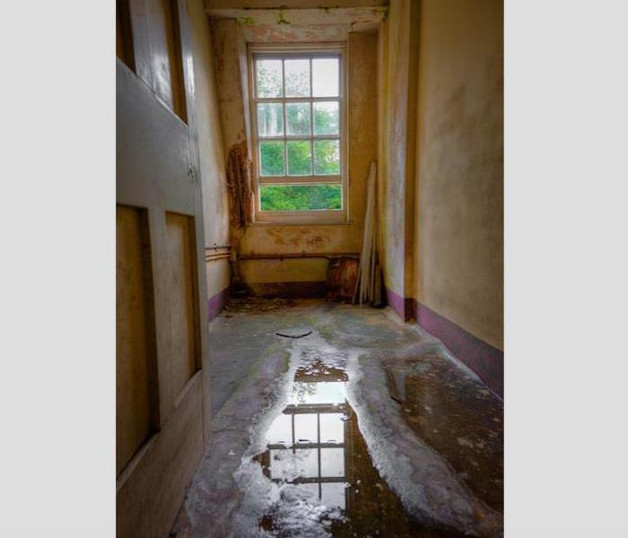 Water Damage Don't Air Dry Water Damage in Your Groveland Home