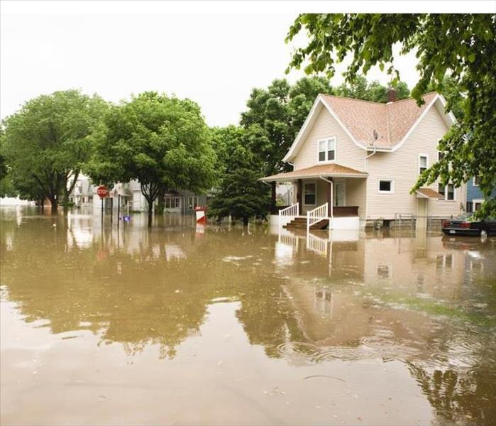 Storm Damage Solutions to Flood Damage on Your Minneapolis Property
