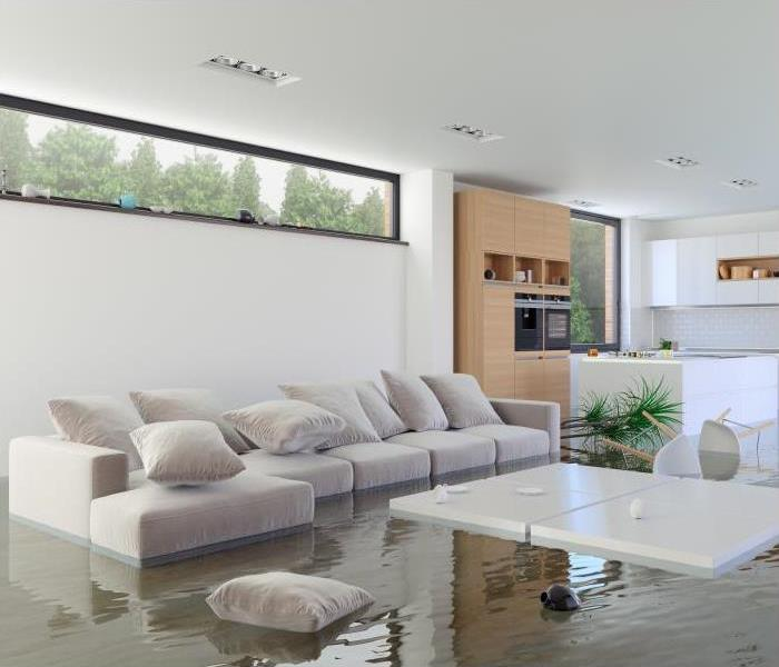Storm Damage How Professionals Perform Flood Damage Restoration In Minneapolis