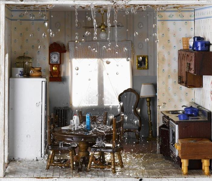 Water Damage Signs of a Leaking Refrigerator in Your Minnetonka Mills Home