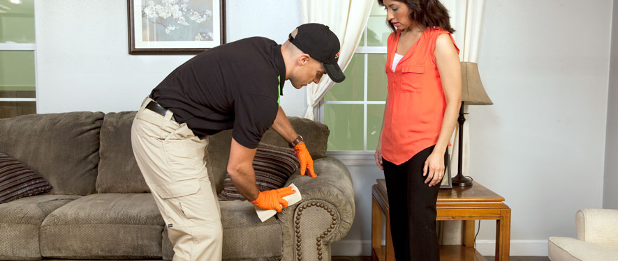 Minneapolis, MN carpet upholstery cleaning